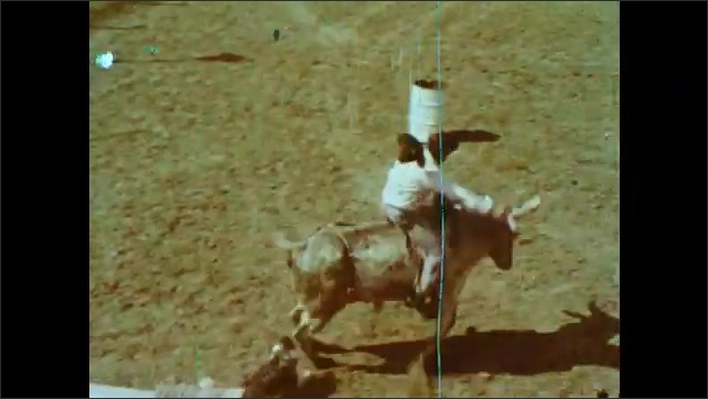 1970s: UNITED STATES: driver sits in racing car. Man on back of bucking bronco. Scuba diver prepares to dive. Man in pen. Skydiver prepares parachute