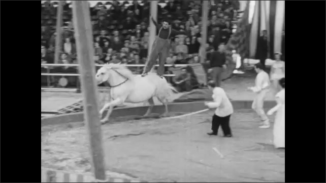 1940s: Clowns leap upon and stands on moving horse. Clown leaps from back of moving horse.