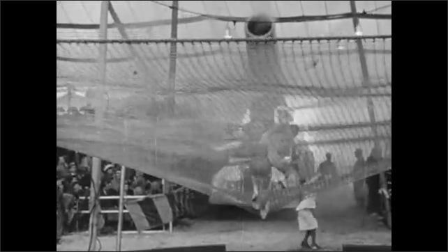 1940s: Man and woman stand and celebrate on net. Audience watches human cannonballs descend net.