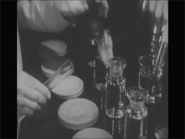 1940s: Man looks into microscope.  Man makes cultures in petri dishes.  Man swirls dish.  Man puts samples into incubator.  Man holds up dish.