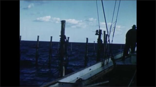 1950s: Men in skiff move around pound net trap. Man on boat throws ropes onto sticks into water. Three men climb into skiff.