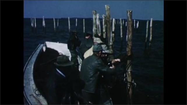 1950s: Skiff exits fish trap. Men tie ropes around sticks.