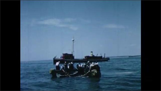 1950s: UNITED STATES: menhaden fish inside net. Men pull in net.