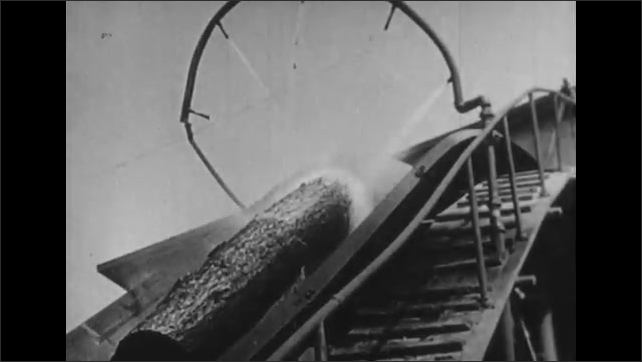 1930s: UNITED STATES: workers clean up undergrowth in forest. Wood at lumber mill on machine. Saw cuts through logs at saw mill