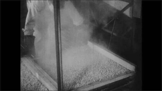 1940s: UNITED STATES: man moves trays at carrot factory. Machine and heated air in driers kill off enzymes. Man pushes car into dryer.