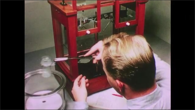 1950s: UNITED STATES: man experiments with small disc in container. Man places glass cover over container. Man puts container in experimental cupboard