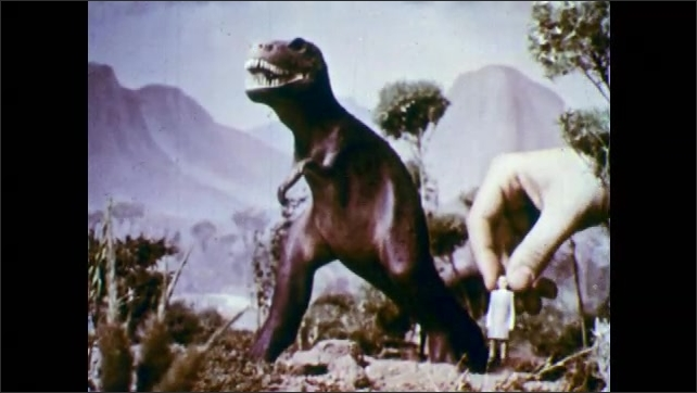 1950s: Hand places model of man next to model of Tyrannosaurus.