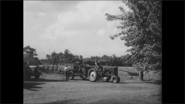 1940s: Children stand in fence, lean over, grab cow's horns, pet cows. Tractor drives past, boy runs over to tractor, sits on back, rides.
