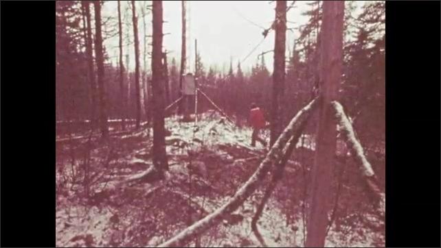 1960s: Man walks through woods to communications array.