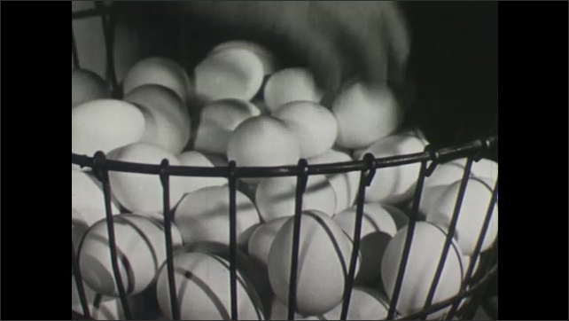 UNITED STATES 1940s : Packing Eggs into Boxes for Protection