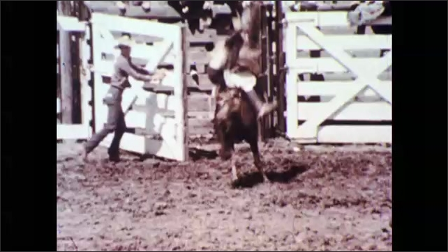 1960s: Child in crowd. Crowd in stands. Man on bronco comes out of gate. Man on bronco. Girls in crowd. Man falls off horse. Girls gasp. Man fishing. View of men. Fish in water. Close up of man.