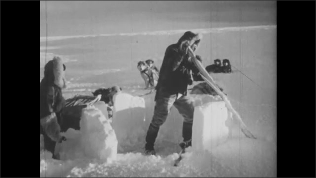 1940s: Man and boy build snow shelter with snow and driftwood.