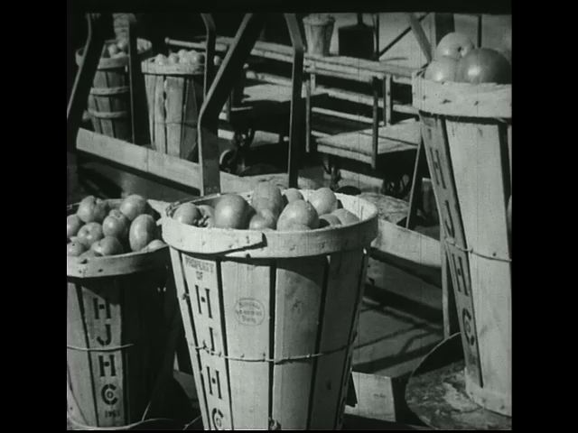 Pails of tomatoes are hanged on a chain that carries them inside a manufacturing plant.