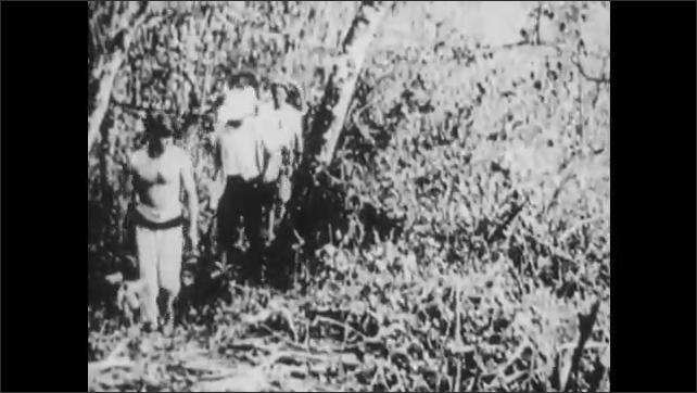1930s: Men race sled dogs across snow.  Men walk through jungle.  Men row boat.  Man looks into microscope.