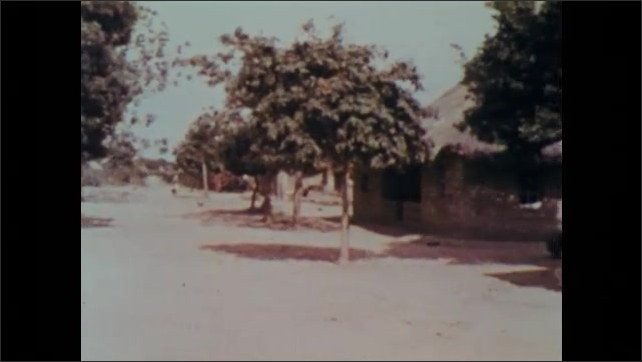 1970s: People walk and gather on the streets of a village lined with trees.