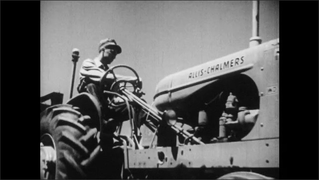 1950s: Man drives tractor with combine. Combine blades cut through grain.