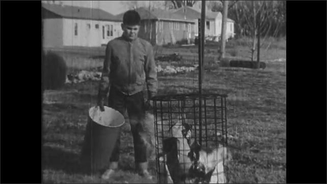1950s: UNITED STATES: boy puts rubbish in trash burner. Boy puts lid on trash burner. Boy stands and watches fire