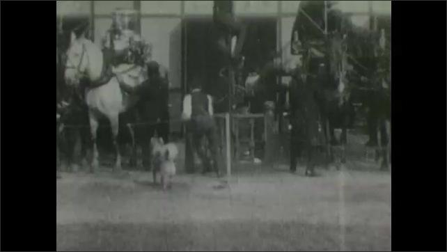 1900s: Firehouse, doors burst open, dog runs around, men hitch horses to wagons, slide down pole, climb into wagons, gallop away.