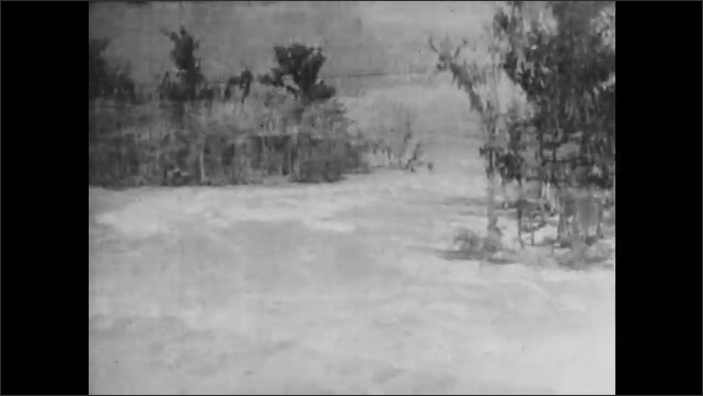 1930s: Floodwaters flow around trees.