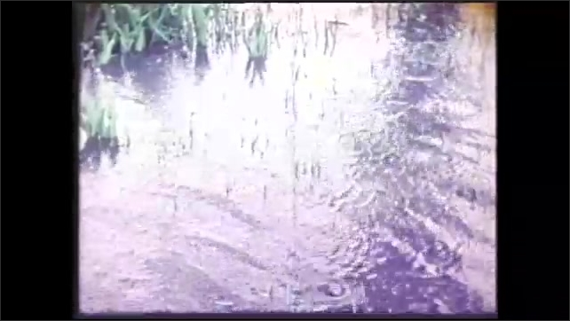 1980s: Clouds.  Trees.  Rain drops fall on water.