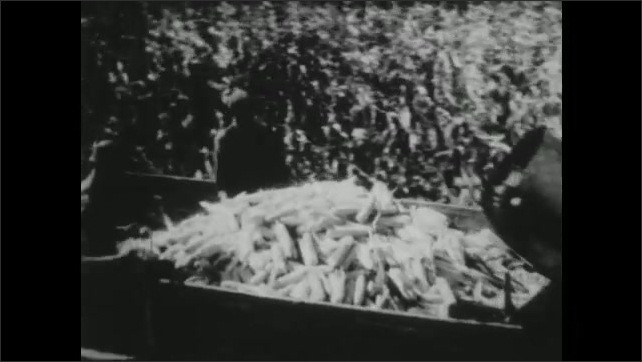 UNITED STATES 1940s : Farming Soy Beans and Corn
