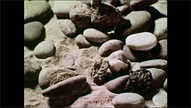 UNITED STATES 1950s : Rocks, Pebbles, and Stones on a Beach