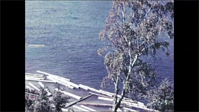 1960s RUSSIA: Cut logs float near shoreline of river in rural Russia.