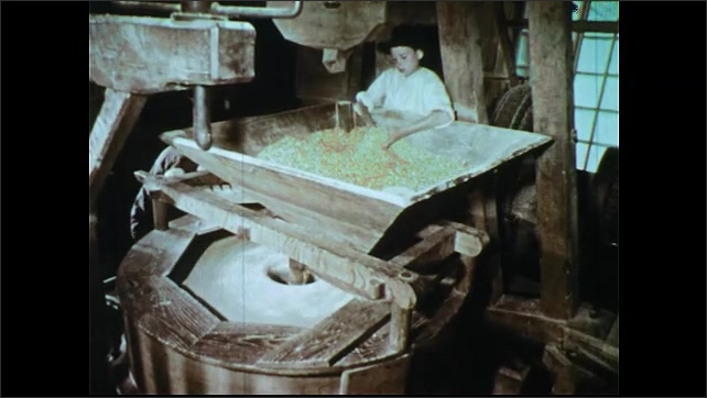 1950s: Man spreads meal exiting grinder. Hand spreads meal. Boy feels grain in hopper. Boy puts sack into wagon. Boy climbs into wagon.