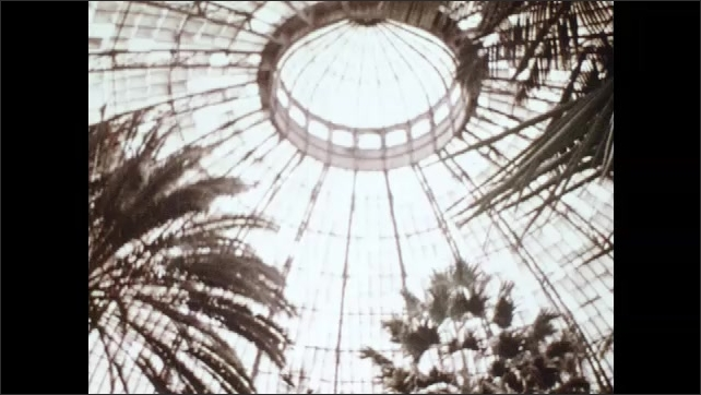 1970s: Buildings.  Man walks through botanical gardens.  Plants.  Waterfall.