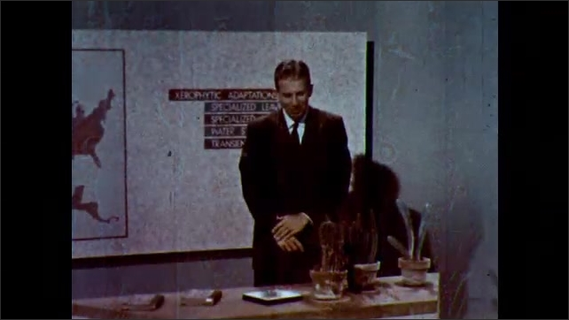 1960s: Man talking by chart. View of cactus, Close up of flowers. Close up of detail on cactus. Man talking by chart. Hand points to cactus on table.