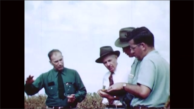 1950s: Men weigh ears of corn on bucket. Car parked in corn field as men discuss weighed corn.