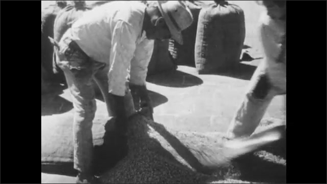1960s: High angle view of factory. Man shoveling coffee beans. Men fill bag with coffee beans. Women walking next to train.