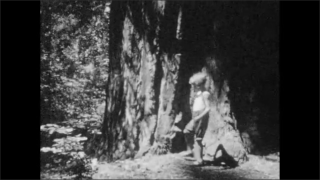 1930s: UNITED STATES: trees blow in breeze. Girl walks in woods. View through trees. Man and girl pose for camera. Haa