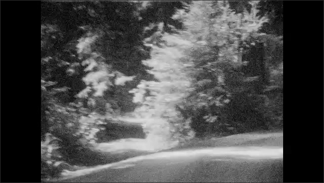1930s: UNITED STATES: trees in forest. Car drives through woods. Road through forest. View along road from car