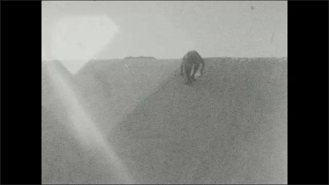 1930s: UNITED STATES: men sledge down mountain snow. Man slides down snow on mountain. Man on skis