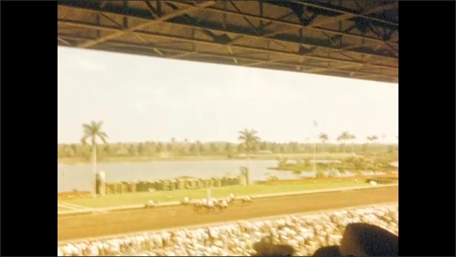 1940s: Horses race down track at racetrack. Woman jumps up and down in excitement. Speedboat races on water feature.