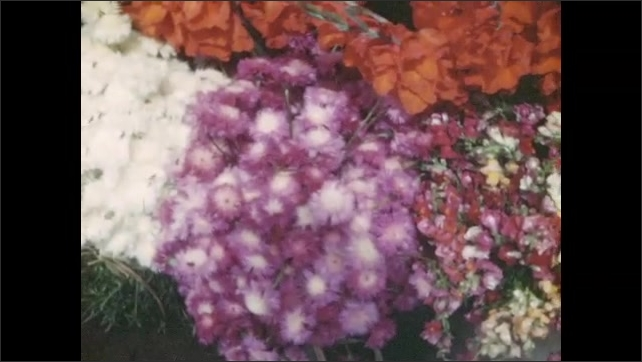 1940s: MEXICO: purple flowers on market stall. People buy flowers at market. Flowers in bucket