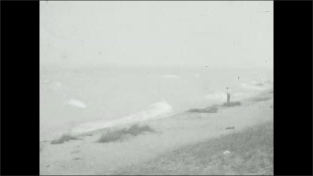1920s: Flowers and trees sway in the breeze. Person stands on beach, waves crash on beach. Slides on beach.