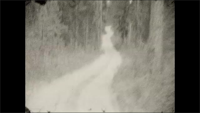 1920s: Driving down road through woods.