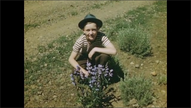 1940s: UNITED STATES: child sits by wild flowers. View along mountain road. View across valley floor