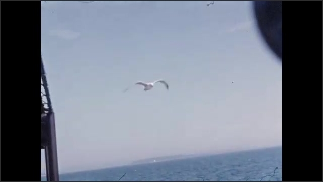 1940s: Seagulls hover in the air off the deck of a boat.