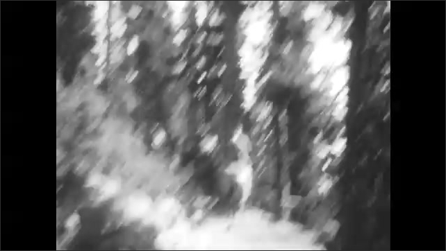 1920s: Shaky view of people riding horses on a tree-lined path.
