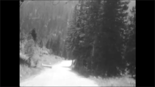 1920s: Car passes by. Drive through forest, excavator is operated ahead on street. Drive through forest. Drive on flat land.