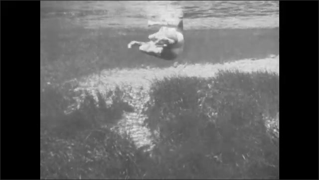 1940s: A woman swims using the inverted swimmer stroke, then adds the shallow arm pull. View from above and below the water.