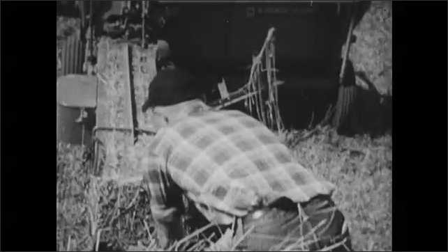 1950s: Teen boy sits on porch of a farm house. Teen boy rides the trailer behind a tractor, throwing bales of hay.