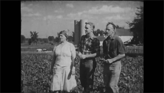 1950s: Teen boy hoes dirt around a plant. Farmer, his wife and teen son walk into the field and examine the crop.