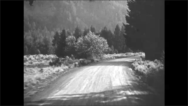 1930s: curvy dirt roads cut through forest and tree lined hillside near river and mountain ranges in Yellowstone National Park.