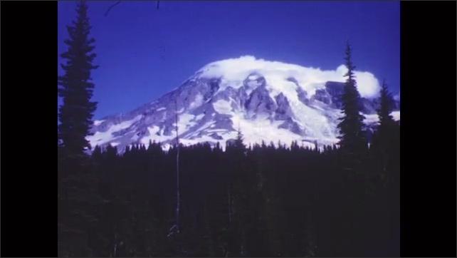 1950s: Marmot eats grass on roadside. Snowy mountain vista. Tree-lined mountain road. Car drives down mountain highway.