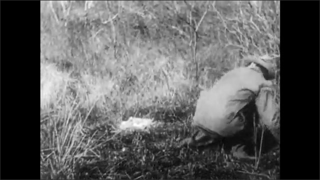 1940s: Man chases goose away from nest.  Deer and fawn run.