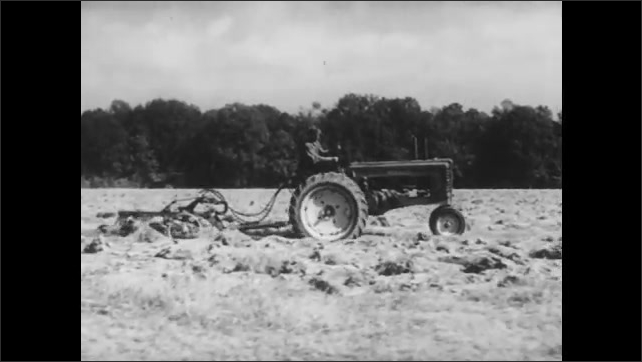 1950s: Agricultural field. Farmer on tractor pulls steel plow across earth. Farmer holds small wooden plow, pulled behind pair of oxen linked with wooden yoke.